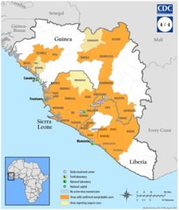 Ebola, facciamo il punto