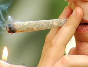 Cannabis, medicina, uso ricreazionale, uso medico, THC, spinello