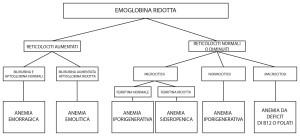 Schema diagnostico delle anemie